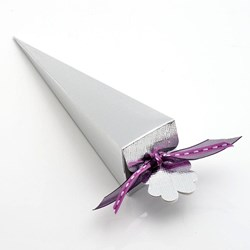 Picture of Silver Silk Favour Box