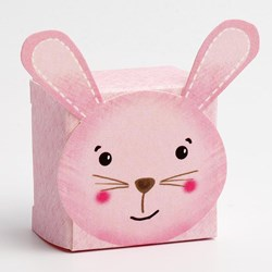 Picture of DIY Pink Friends Rabbit