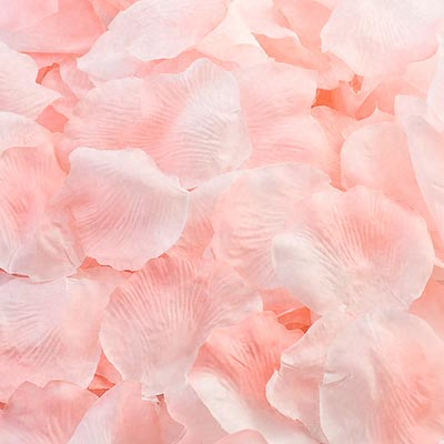 Picture of Fabric Petals in Pastel Pink