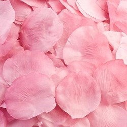 Picture of Fabric Petals in Pink