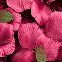 Picture of Satin Petals in Magenta
