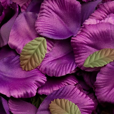 Picture of Satin Petals in Purple
