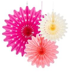 Picture of Blossom Paper Fans