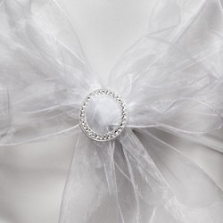 Picture of Organza Chair Sash