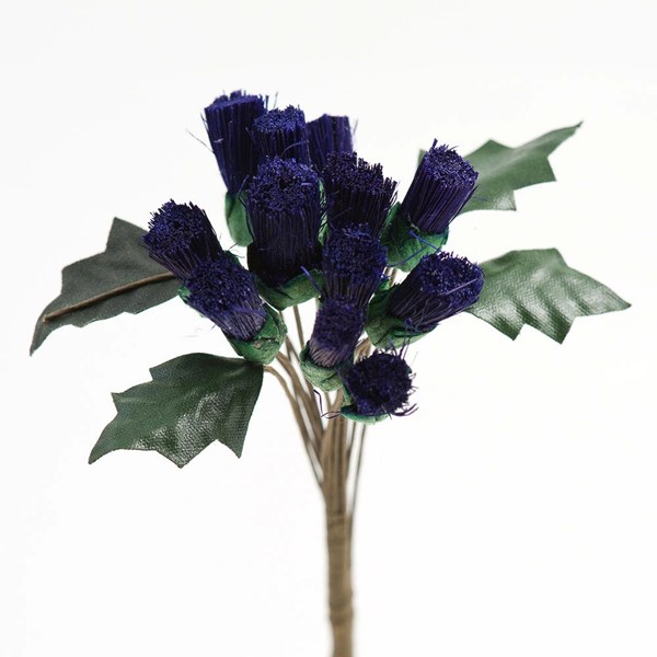 Picture of Purple Thistle Flowers