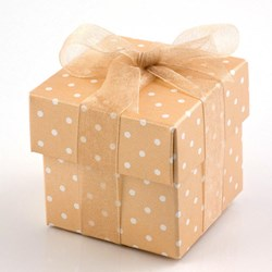 Picture of Polka Dot Favour Boxes