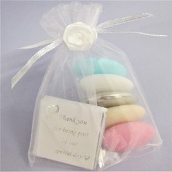 Picture of Pastel Dragee Special Day Favour Bag