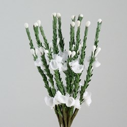 Picture of Heather Stems