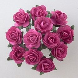 Picture of DIY Tea Roses in Fuchsia