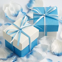 Picture of DIY Two Tone Boxes in Blue Silk & White Silk