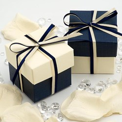 Picture of DIY Two Tone Boxes in Navy & Ivory Silk