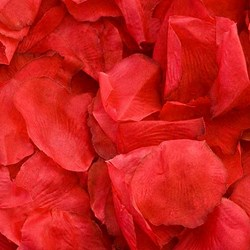 Picture of Fabric Petals in Red