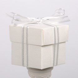 Picture of Organza Satin Edge Ribbon in White/Silver