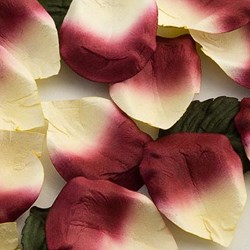 Picture of Paper Rose Petals in Burgundy