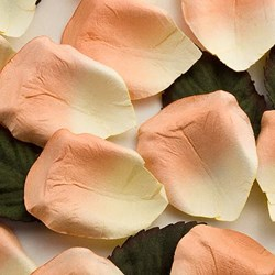 Picture of Paper Rose Petals in Peach