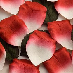 Picture of Paper Rose Petals in Red