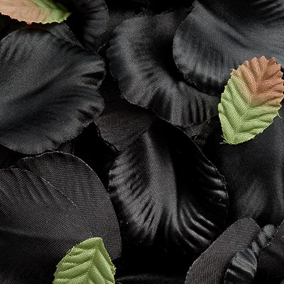 Picture of Satin Petals in Black