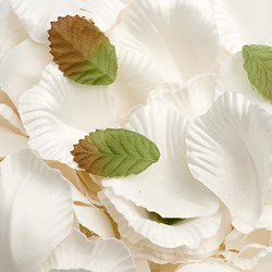 Picture of Satin Petals in Ivory
