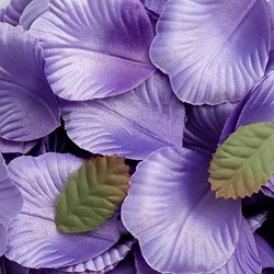 Picture of Satin Petals in Lilac