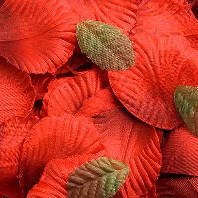 Picture of Satin Petals in Red