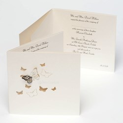 Picture of Pearl/Silver Stencil 3D Butterfly Invitation Cards